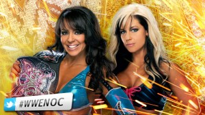 Layla vs Kaitlyn Night Of Champions 2012